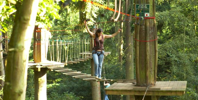 Go Ape at Dalby Forest